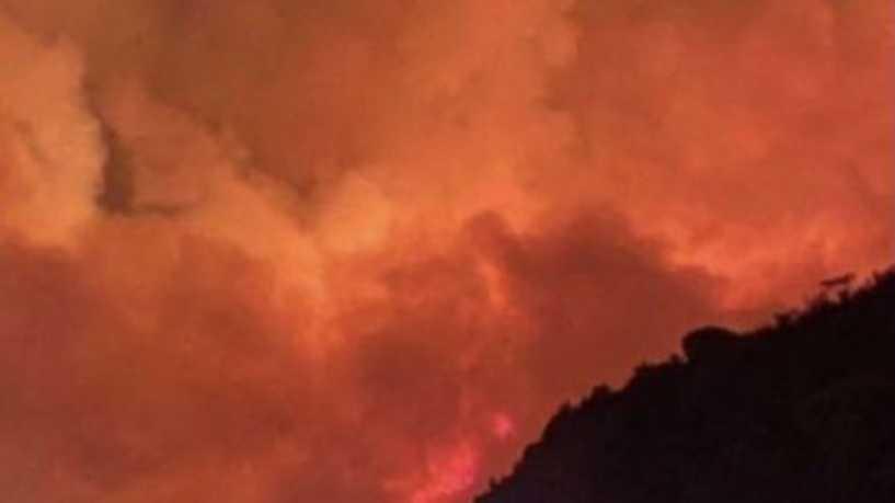 Photo of كم بلغت مساحة حريق تنومة في السعودية؟